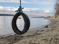 OCEAN BEACH TIRE SWING