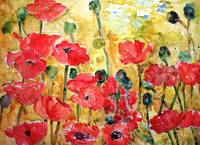 Poppies Viridian