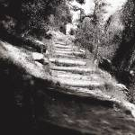"""Steep Path in Black and White"" by MelanieDoty"