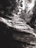 Steep Path in Black and White