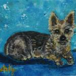 """Yorkie"" by paintingsbygretzky"