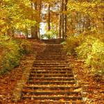 """The long steps at Miller Park"" by DeborahWillardDesign"