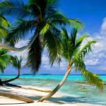 """Tepuka Island Tuvalu"" by rdwittle"