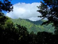 Manoa Valley, Oahu, Hawaii