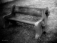 Bench by the Barn