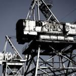 """""""Cranes"""" by dollop"""