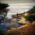 """Monterey, California"" by JenniferLaskerWhite"