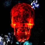 """Red Skull In The Stars"" by ShayneHanson"