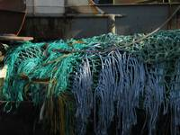 Fishing Nets in New Bedford, MA