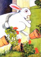 CLASSIC PETER RABBIT ILLUSTRATION