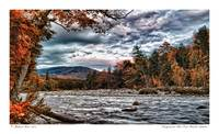 Pemigewasset River East Branch Autum