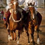 """Omani Horse Traditions - فن ركض العرضة"" by RashedNaamani"