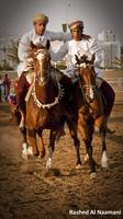 Omani Horse Traditions - فن ركض العرضة