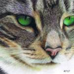 """Emerald Eyes"" by KarenHull"