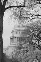 Capitol in Black and White