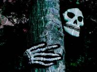 Ghoul in Tree