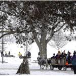 """Canada - Ontario - Orillia Winterfest"" by Marina_L"