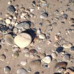 """Beach stones abstract"" by Anewsgal"