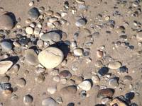 Beach stones abstract