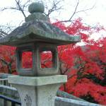 """Ancient lantern post in Kyoto park"" by JoEllis"