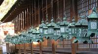 Hanging lanterns in Nara, Japan