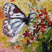 White Butterfly Oil Painting by Ginette Callaway