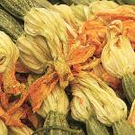 """Zucchini flowers"" by Marina_L"