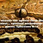"""scripture spiritual wickedness"" by BrianDunne"