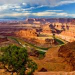 """""""Dead Horse Point"""" by pbk"""