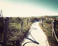 Sanibel's Path-Vintage
