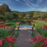 """""""Reflecting Pool, Filoli"""" by SederquistPhotography"""