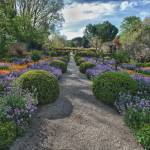 """""""Filoli Path"""" by SederquistPhotography"""