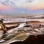 """Driftwood Beach at Sunrise - Kauai, Hawaii"" by PJPHOTO"