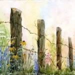"""Fence Line"" by catspaw"