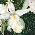 """JOLIE ORCHIDÉE-BEAUTIFUL ORCHID"" by PAINTING"