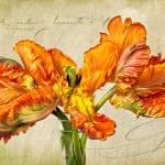 """""""Fiery Floral"""" by LeslieNicole"""