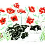 """Black and White and Red Poppies"" by tagscats"