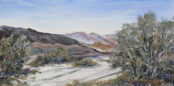 Anza Borrego in the Spring