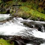 """""""Sweet Creek, Oregon"""" by spike"""