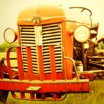 """Massey Furgeson Tractor"" by rYgardner"