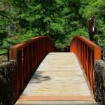 """Across The Bridge Into Beautiful Surroundings"" by artsandi"