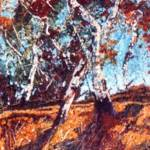 """Eucalyptus Gum Trees"" by Cranbury"