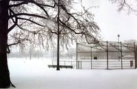 Snowy Baseball Field