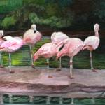 """Flamingos in a Row"" by ACastelli"