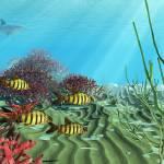 """""""Underwater Adventure"""" by immortalist"""