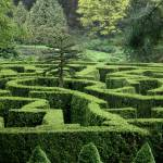 """Garden Maze"" by anthonymdavis"