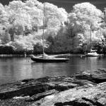 """Boat Harbor near Newport, RI, USA"" by anthonymdavis"