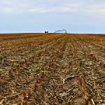 """""""Grand Island Grain Panoramic"""" by Jason_Speer_Photo"""