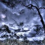 """Before the Thunder (Como, NSW, AUS)"" by alexkess"