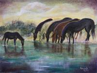 Equestrian Reflections
